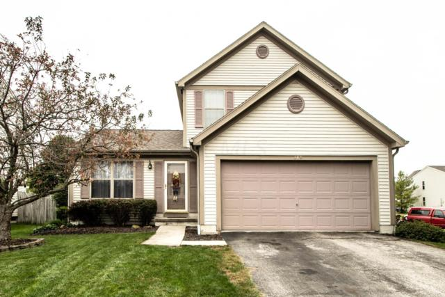 869 Bledsoe Drive, Galloway, OH 43119 (MLS #218037871) :: Exp Realty