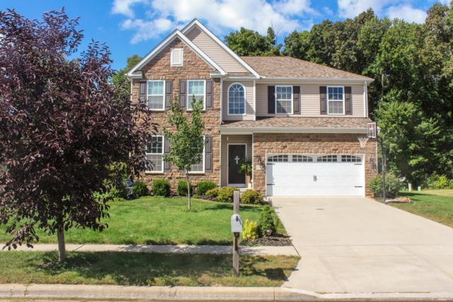 9184 Jackies Bend, Reynoldsburg, OH 43068 (MLS #218037872) :: RE/MAX ONE