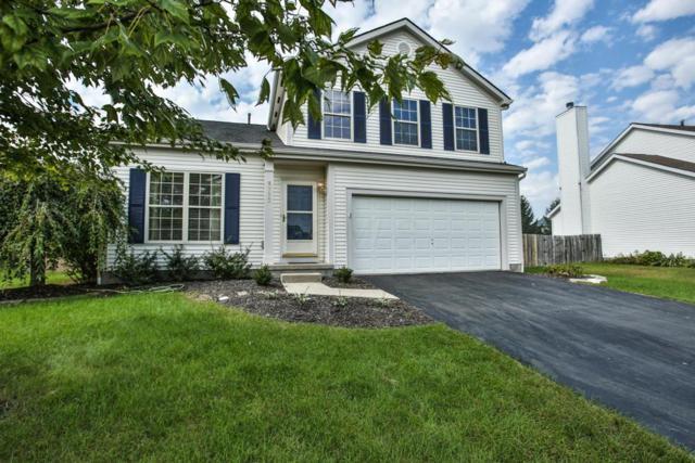 8773 Paulden Court, Lewis Center, OH 43035 (MLS #218037878) :: Signature Real Estate