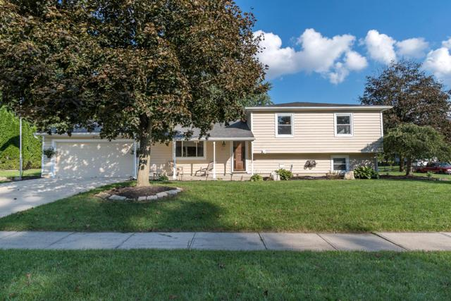 212 Moorfield Drive, Gahanna, OH 43230 (MLS #218038166) :: The Mike Laemmle Team Realty
