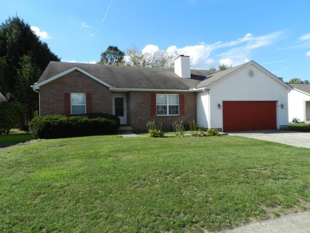 295 Cottontail Drive, Sunbury, OH 43074 (MLS #218038174) :: Keller Williams Excel