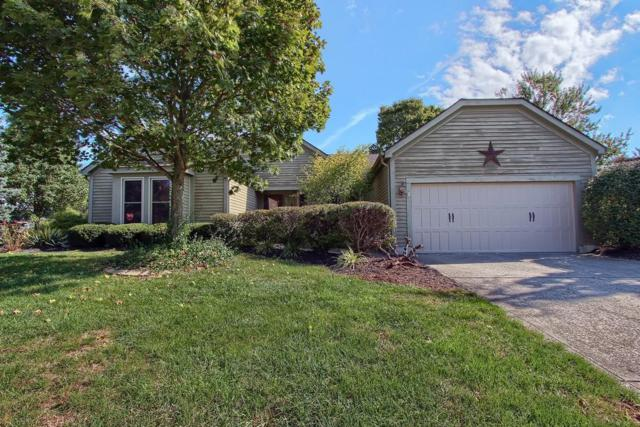 16 Trail Edge Circle, Powell, OH 43065 (MLS #218038246) :: RE/MAX ONE