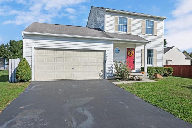 3456 Dristor Drive, Westerville, OH 43081 (MLS #218038302) :: Susanne Casey & Associates