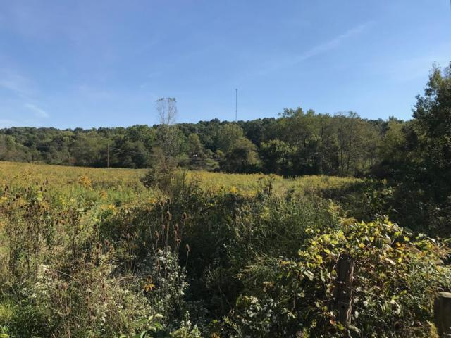 11158 Cullison Road, Frazeysburg, OH 43822 (MLS #218038383) :: The Clark Group @ ERA Real Solutions Realty
