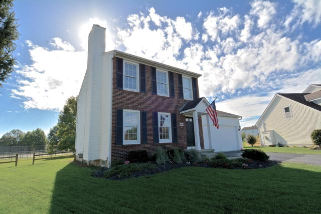 6669 Chelton Place, Westerville, OH 43082 (MLS #218038395) :: Exp Realty