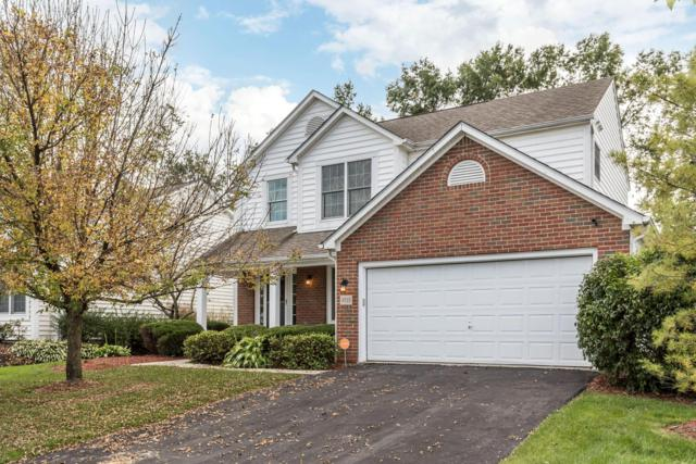 4515 Flower Garden Drive, New Albany, OH 43054 (MLS #218038418) :: Signature Real Estate
