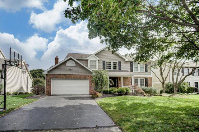 6890 Black Hawk Court, Dublin, OH 43017 (MLS #218038442) :: CARLETON REALTY