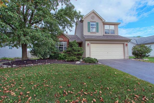 6384 Pinefield Drive, Hilliard, OH 43026 (MLS #218038461) :: Exp Realty