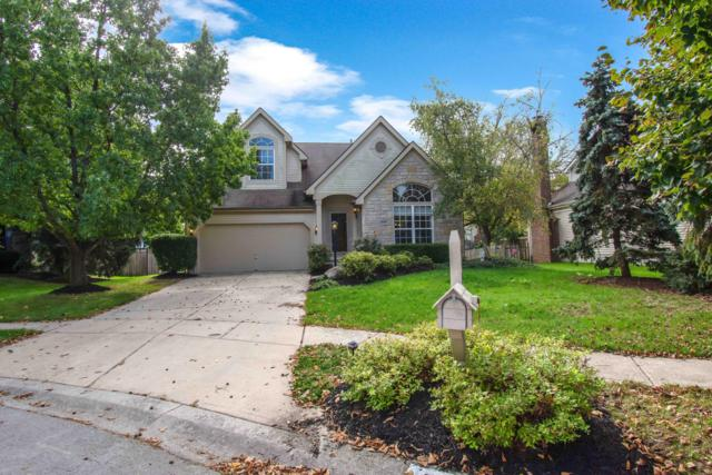 5403 Green Oak Court, Hilliard, OH 43026 (MLS #218038494) :: The Mike Laemmle Team Realty