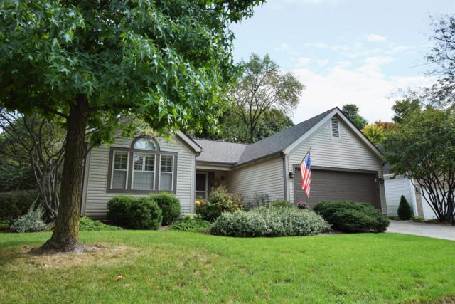 3681 Whitworth Way, Columbus, OH 43228 (MLS #218038629) :: Susanne Casey & Associates