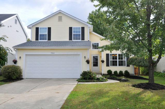 9064 Misty Dawn Drive, Columbus, OH 43240 (MLS #218038688) :: RE/MAX ONE