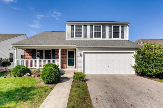 5878 Wyndale Drive, Westerville, OH 43081 (MLS #218038713) :: The Raines Group
