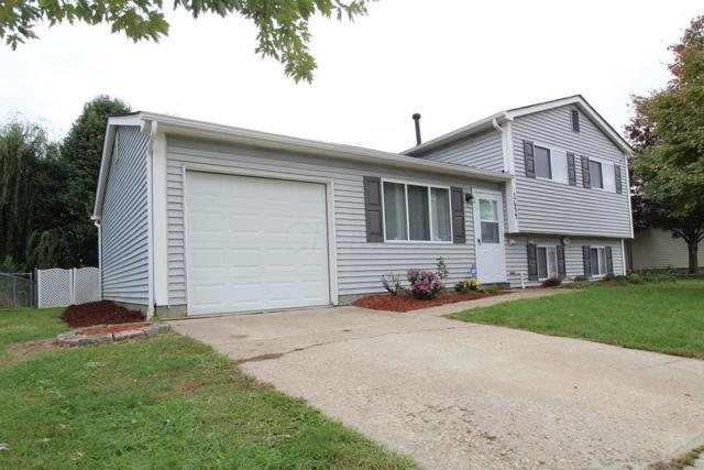 1654 Ringfield Drive, Galloway, OH 43119 (MLS #218038771) :: Berkshire Hathaway HomeServices Crager Tobin Real Estate