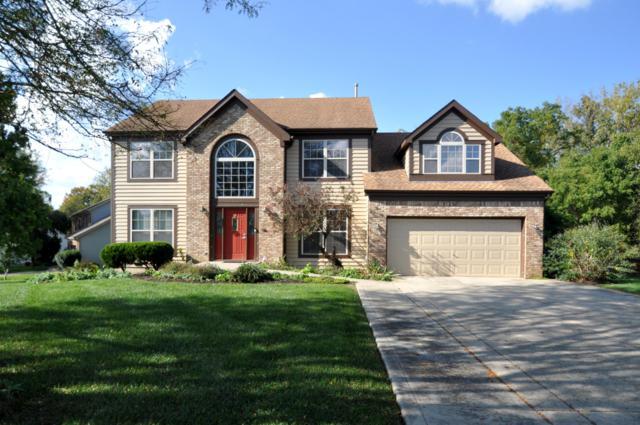 12065 Mallard Pond Drive NW, Pickerington, OH 43147 (MLS #218038805) :: Berkshire Hathaway HomeServices Crager Tobin Real Estate