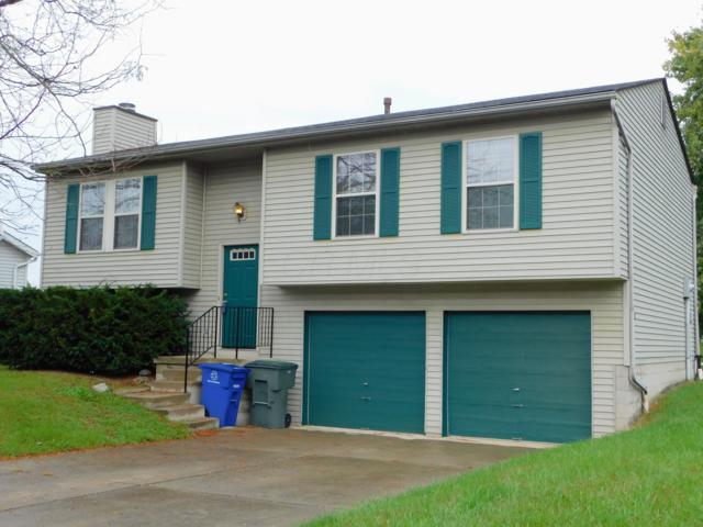 3542 Woody Way, Canal Winchester, OH 43110 (MLS #218038818) :: Exp Realty