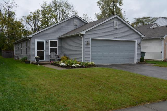 2105 Prominence Drive, Grove City, OH 43123 (MLS #218038853) :: CARLETON REALTY