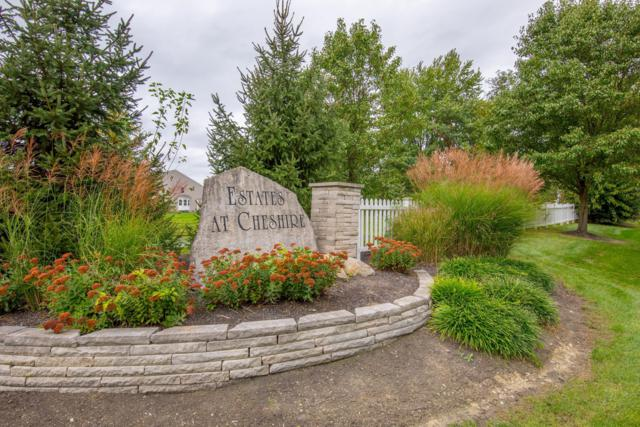 8201 Meadow Chase Drive, Sunbury, OH 43074 (MLS #218038884) :: Brenner Property Group | KW Capital Partners