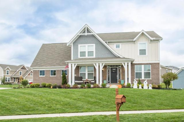 6155 Dietz Drive, Canal Winchester, OH 43110 (MLS #218039143) :: Exp Realty