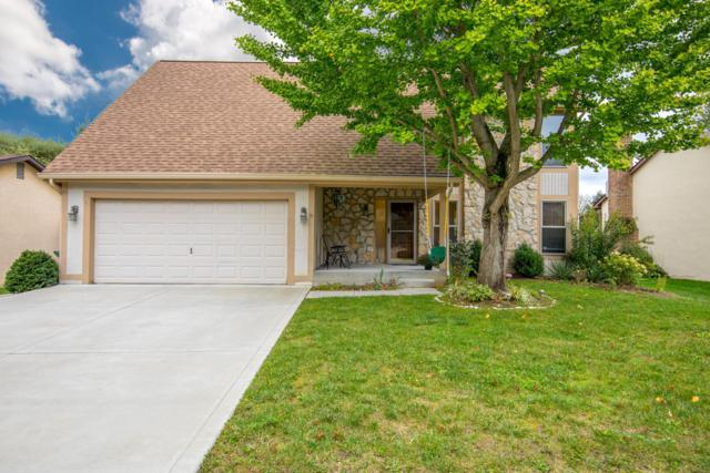 5986 Markridge Lane, Columbus, OH 43231 (MLS #218039200) :: Keller Williams Excel