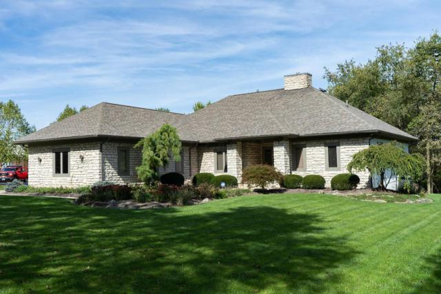 5730 Elmgee Drive, Delaware, OH 43015 (MLS #218039315) :: Signature Real Estate