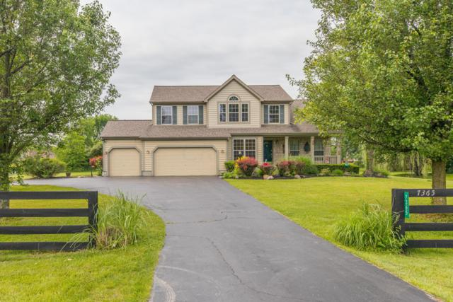 7365 Clark State Road, Blacklick, OH 43004 (MLS #218039383) :: Core Ohio Realty Advisors