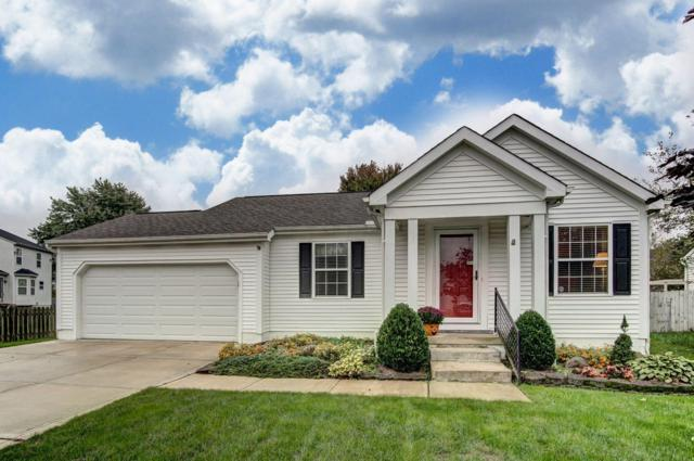 8525 Squad Drive, Galloway, OH 43119 (MLS #218039390) :: Susanne Casey & Associates