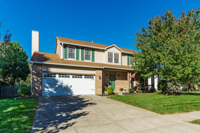 2541 Cowall Drive, Hilliard, OH 43026 (MLS #218039425) :: Signature Real Estate