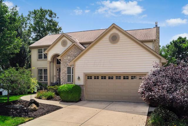 209 Cherokee Court, Pickerington, OH 43147 (MLS #218039430) :: Signature Real Estate