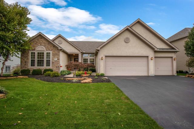 5021 Shoreside Drive, Grove City, OH 43123 (MLS #218039522) :: Signature Real Estate