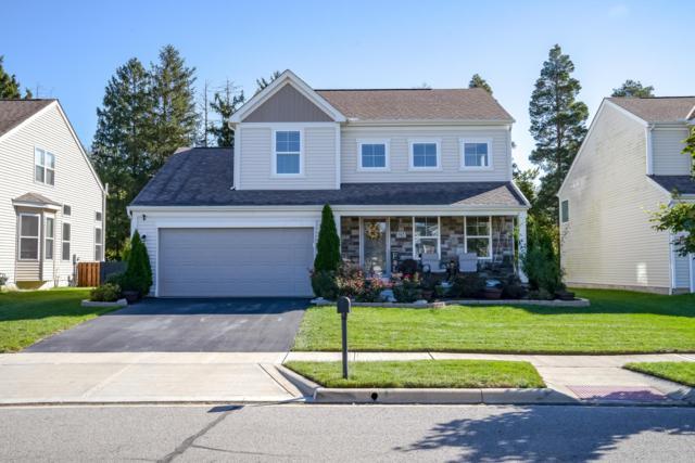162 Rockbrook Crossing Avenue, Galloway, OH 43119 (MLS #218039542) :: Signature Real Estate
