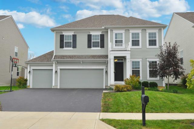 2643 Anderson Drive, Hilliard, OH 43026 (MLS #218039548) :: Julie & Company