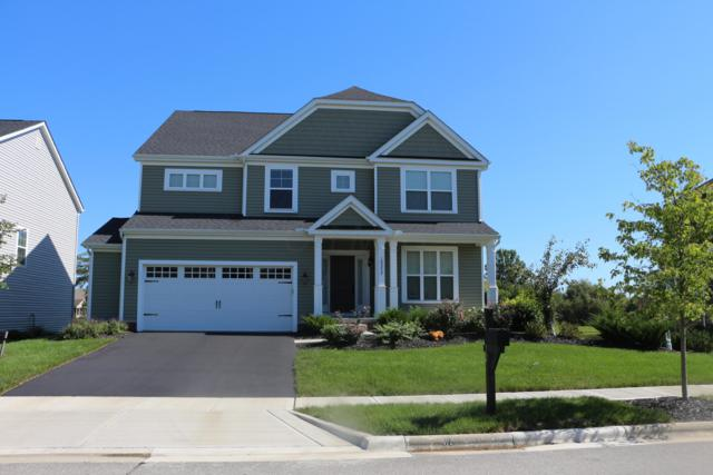 10372 Hazelnut Drive, Plain City, OH 43064 (MLS #218039553) :: Signature Real Estate