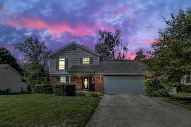 1779 Hickory Hill Drive, Columbus, OH 43228 (MLS #218039565) :: Susanne Casey & Associates