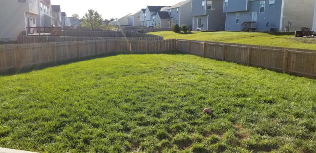 2335 Boston Mills Drive, Grove City, OH 43123 (MLS #218039615) :: Signature Real Estate