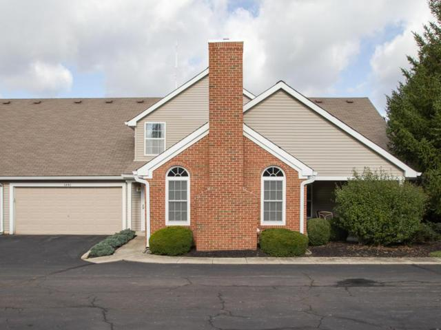 6440 Mount Royal Avenue, Westerville, OH 43082 (MLS #218039677) :: Exp Realty