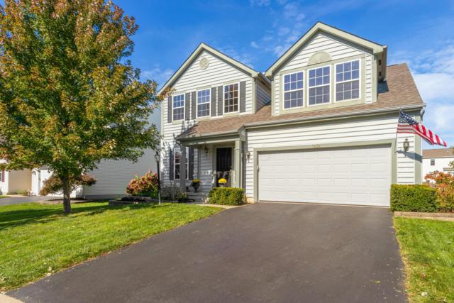 7636 Dover Ridge Drive, Blacklick, OH 43004 (MLS #218039817) :: Exp Realty