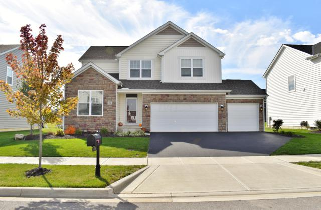 456 Red Stag Road, Delaware, OH 43015 (MLS #218039850) :: Exp Realty