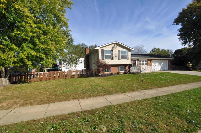 8864 Canoe Drive, Galloway, OH 43119 (MLS #218039921) :: RE/MAX ONE