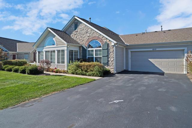 6205 Innovation Drive, Dublin, OH 43016 (MLS #218040042) :: Brenner Property Group | KW Capital Partners