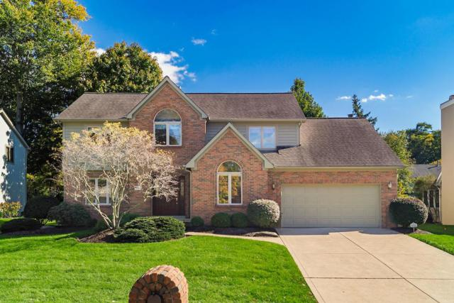 912 Old Pine Drive, Columbus, OH 43230 (MLS #218040079) :: Exp Realty