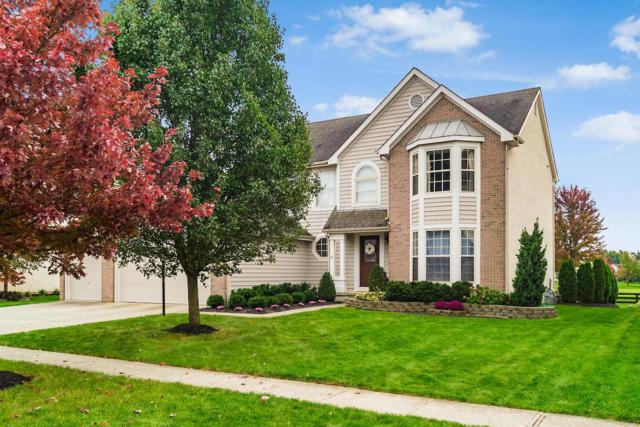 3733 Hickory Rock Drive, Powell, OH 43065 (MLS #218040191) :: Exp Realty