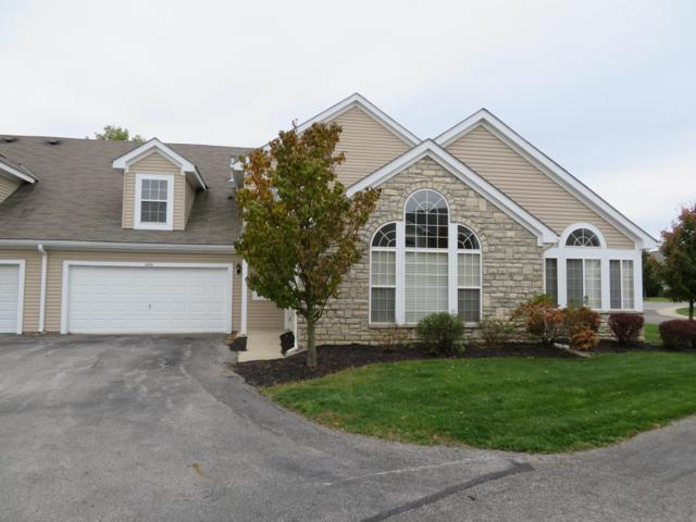 5242 Bridwell Lane, Westerville, OH 43081 (MLS #218040480) :: Signature Real Estate