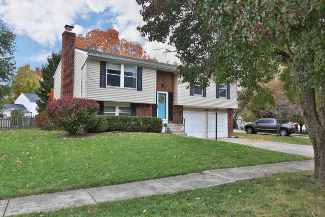 3067 Downhill Drive, Columbus, OH 43221 (MLS #218040744) :: RE/MAX ONE