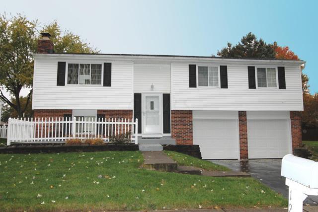 1231 Glenview Street, Reynoldsburg, OH 43068 (MLS #218041005) :: Keller Williams Excel