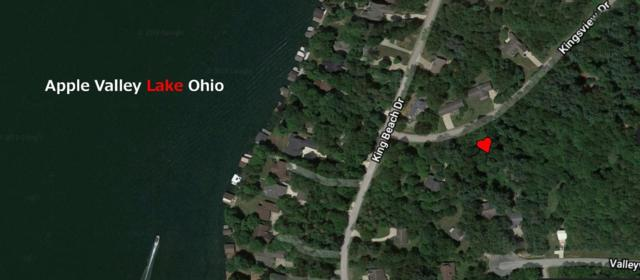 Lot 365 King Beach Terrace Drive, Howard, OH 43028 (MLS #218041031) :: The Clark Group @ ERA Real Solutions Realty