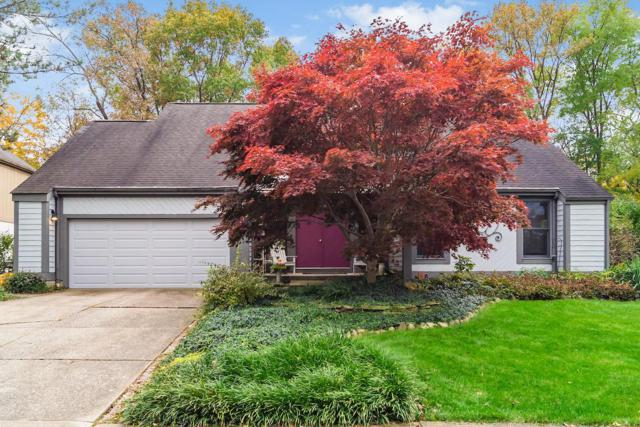 411 Mainsail Drive, Westerville, OH 43081 (MLS #218041044) :: RE/MAX ONE