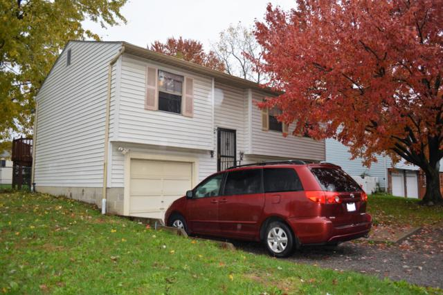 5143 Magnolia Blossom Boulevard, Columbus, OH 43230 (MLS #218041053) :: RE/MAX ONE