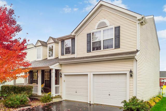 5941 Painted Leaf Drive, New Albany, OH 43054 (MLS #218041093) :: Signature Real Estate