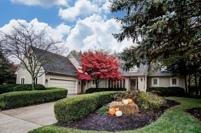 8101 Holyrood Court, Dublin, OH 43017 (MLS #218041303) :: Exp Realty