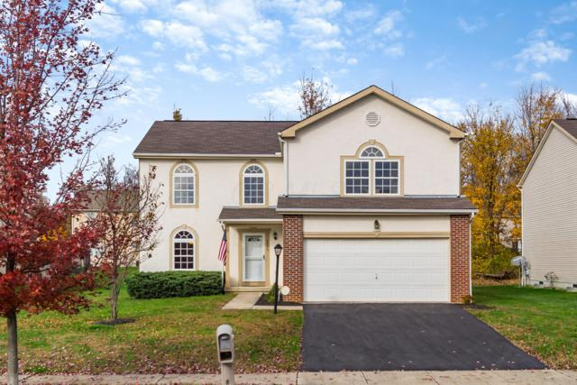 8006 Harvestmoon Drive, Reynoldsburg, OH 43068 (MLS #218041326) :: Signature Real Estate